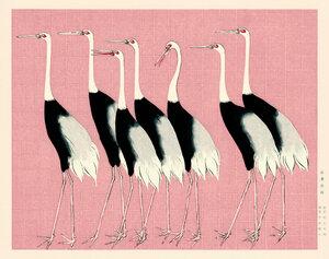 Kraniche vor rosa Hintergrund by Ogata Korin - Poster von Japanese Vintage Art - Photocircle