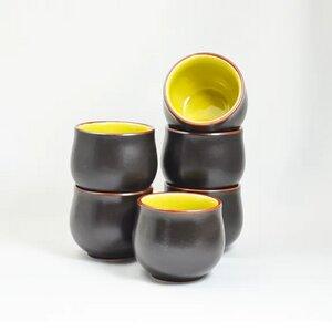 Teecup Cha Wan aus Porzellan 6 Stück innen veschiendene Farben - ja-unendlich