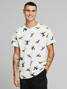 T-Shirt Hummingbirds - DEDICATED