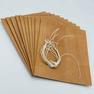 Wood Wraps Masterpiece Birne - MASTER PIECE