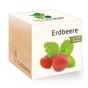Erdbeere im Holzwürfel mit Bio-Samen - 'Ecocube' - EcoCube