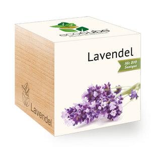 "Lavendel im Holzwürfel mit Bio-Samen - ""Ecocube"" - EcoCube"