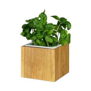 Pflanzkasten Eiche Massivholz geölt mit Einsatz Kräuterbox - GreenHaus