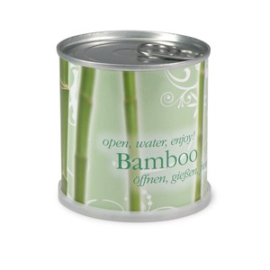 Blumen in der Dose - Bambus - Bamboo - MacFlowers