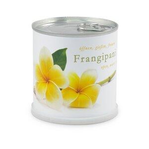 Blumen in der Dose Frangipani - Plumier - MacFlowers