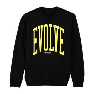 Unisex Sweater – EVOLVE - Qocoon