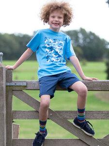 Kinder T-Shirt Shark reine Bio-Baumwolle - Kite Clothing