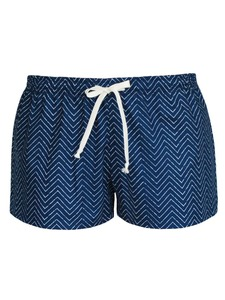 LINEAL PATH Shorts - blau - woodlike
