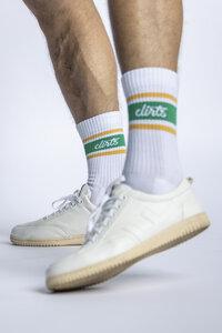 STRIPED Socks - dirts