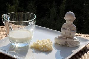 XXL BIO Kefir / Milchkefir Getränk mit Kefirknollen für 2L Kefirdrink - Natural-Kefir-Drinks