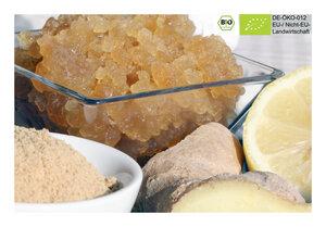 BIO Ginger Root Getränk mit 15g Kefirpilzen für 0,5L Ingwerlimonade - Natural-Kefir-Drinks