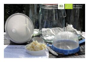 BIO Kefir / Milchkefir Komplettset für 1L - auspacken und loslegen! - Natural-Kefir-Drinks