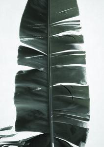 Tropical Jungle Vibes - Poster von Studio Na.hili - Photocircle