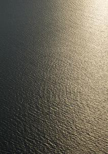 Golden Golden Sunset - Poster von Studio Na.hili - Photocircle