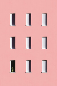 Sunbathing Cactus - Poster von Rupert Höller - Photocircle