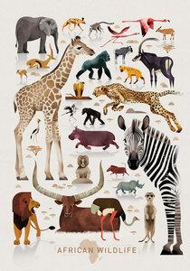 Afrika - Poster von Dieter Braun - Photocircle