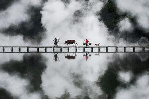Bridge Crossing - Poster von AJ Schokora - Photocircle