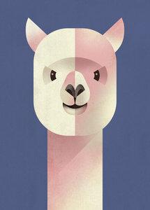 Alpaka - Poster von Dieter Braun - Photocircle