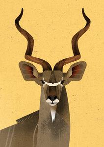Großer Kudu - Poster von Dieter Braun - Photocircle