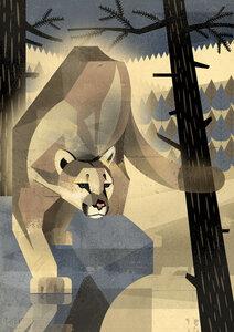 Puma - Poster von Dieter Braun - Photocircle