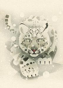 Schneeleopard - Poster von Dieter Braun - Photocircle