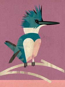 Eisvogel - Poster von Dieter Braun - Photocircle