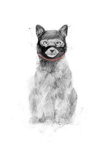 Masked cat - Poster von Balazs Solti - Photocircle
