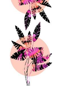 Schwarz-pinke Blätter - Poster von Pia Kolle - Photocircle