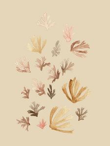 Nude Corals - Poster von Christina Wolff - Photocircle
