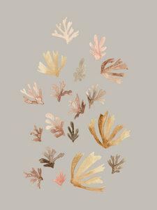 Pastel Corals - Poster von Christina Wolff - Photocircle
