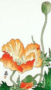 Vögel und Pflanzen von Ohara Koson - Poster von Japanese Vintage Art - Photocircle
