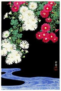 Chrysanthemen von Ohara Koson - Poster von Japanese Vintage Art - Photocircle