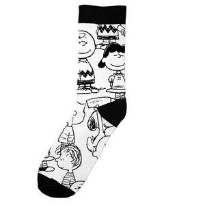 Herren Socken mit Peanuts Motiv - DEDICATED