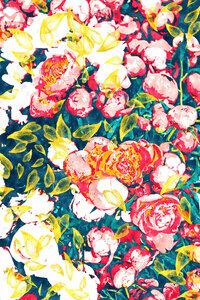 Nature Smiles in Flowers - Poster von Uma Gokhale - Photocircle
