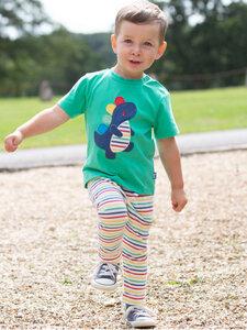 Kite Baby und Kinder T-Shirt Rainbow-Rex reine Bio-Baumwolle - Kite Clothing