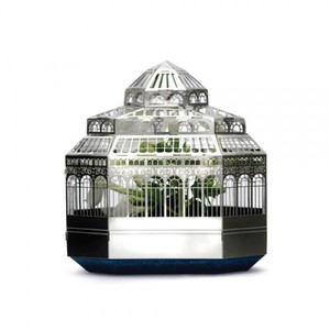 PLANTINI Mini-Gewächshaus zum Zusammenbauen mit Veilchen-Samen  - another studio
