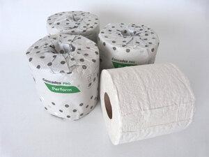 10 Rollen Recycling Toilettenpapier xxl Rollen 400 Blatt - 100% eco