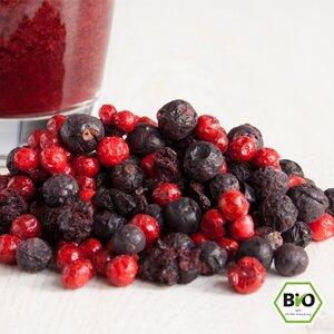 """BIO Smoothie-Mix """"Herbe Liebe"""" - 25g gefriergetrocknete Früchte - RezeptGewürze"""