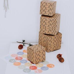 24 Schachteln für Adventskalender und Zahlen PASTELL - Fines Papeterie