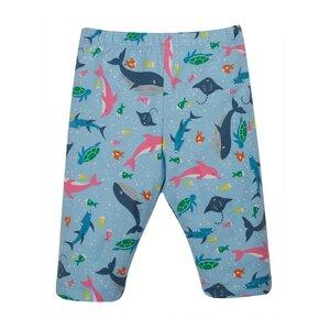 Frugi Shorts Wale hellblau Bio-Baumwolle - Frugi