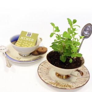 Pflanz-Set: Eine Tasse Tee bitte! Motiv: 98 - Parzelle43