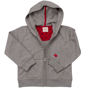 Sweatjacke grau mit Kapuze - People Wear Organic