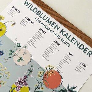 Saisonkalender - Wildblumen für Aussat und Blüte A2 - 4peoplewhocare
