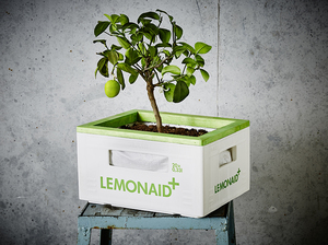 LemonAid Gartenkiste / Hochbeet - LemonAid