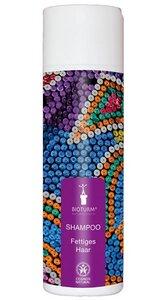 Shampoo Fettiges Haar Nr. 101 - Bioturm