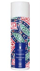 Shampoo Glänzendes Haar Nr. 102 - Bioturm