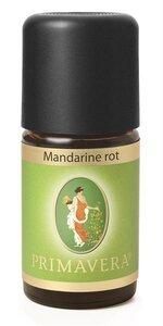Mandarine rot - Primavera
