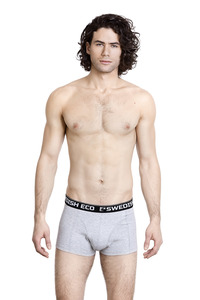 SWEDISH ECO Organic Boxer Briefs  - Swedish Eco