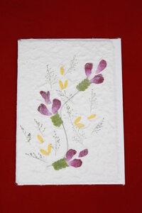 Set 4 Grusskarten aus handgeschöpftem Maulbeerbaumpapier - Schönes aus Indochina
