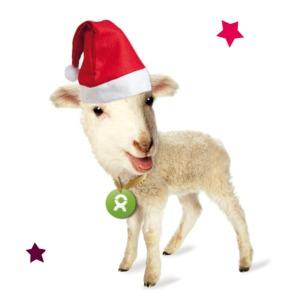 Lamm (Weihnachten) - OxfamUnverpackt